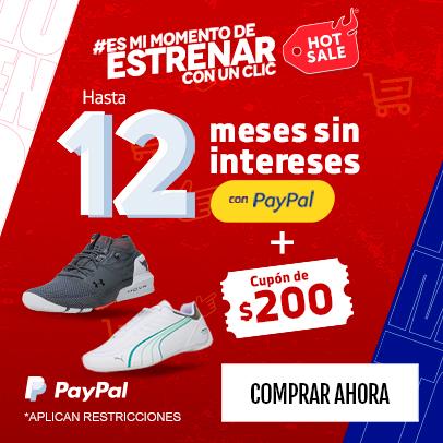 Banner 12 MSI paypal hotsale